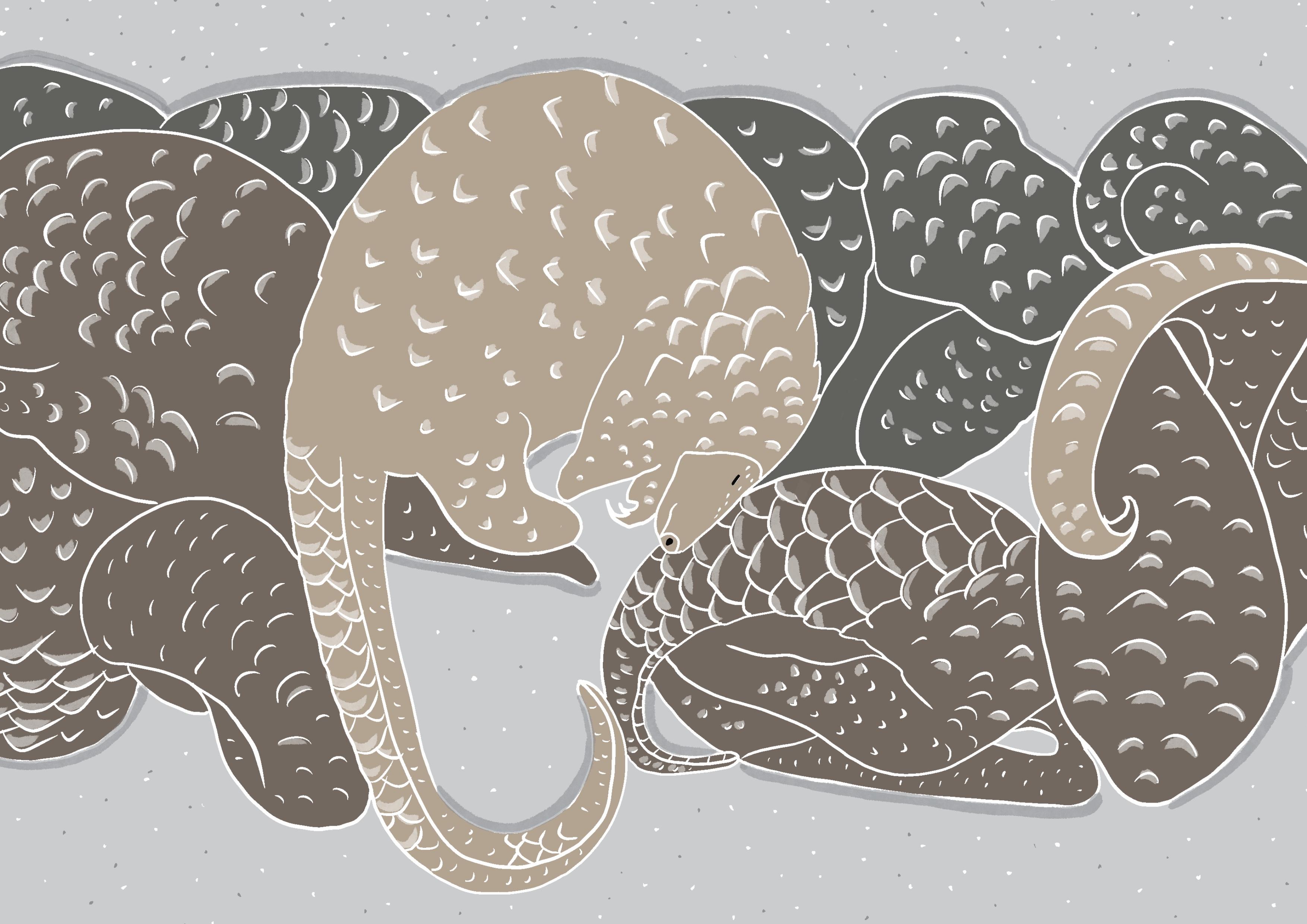 Pangolino congelati in un frigo by Virginia Elena Patrone