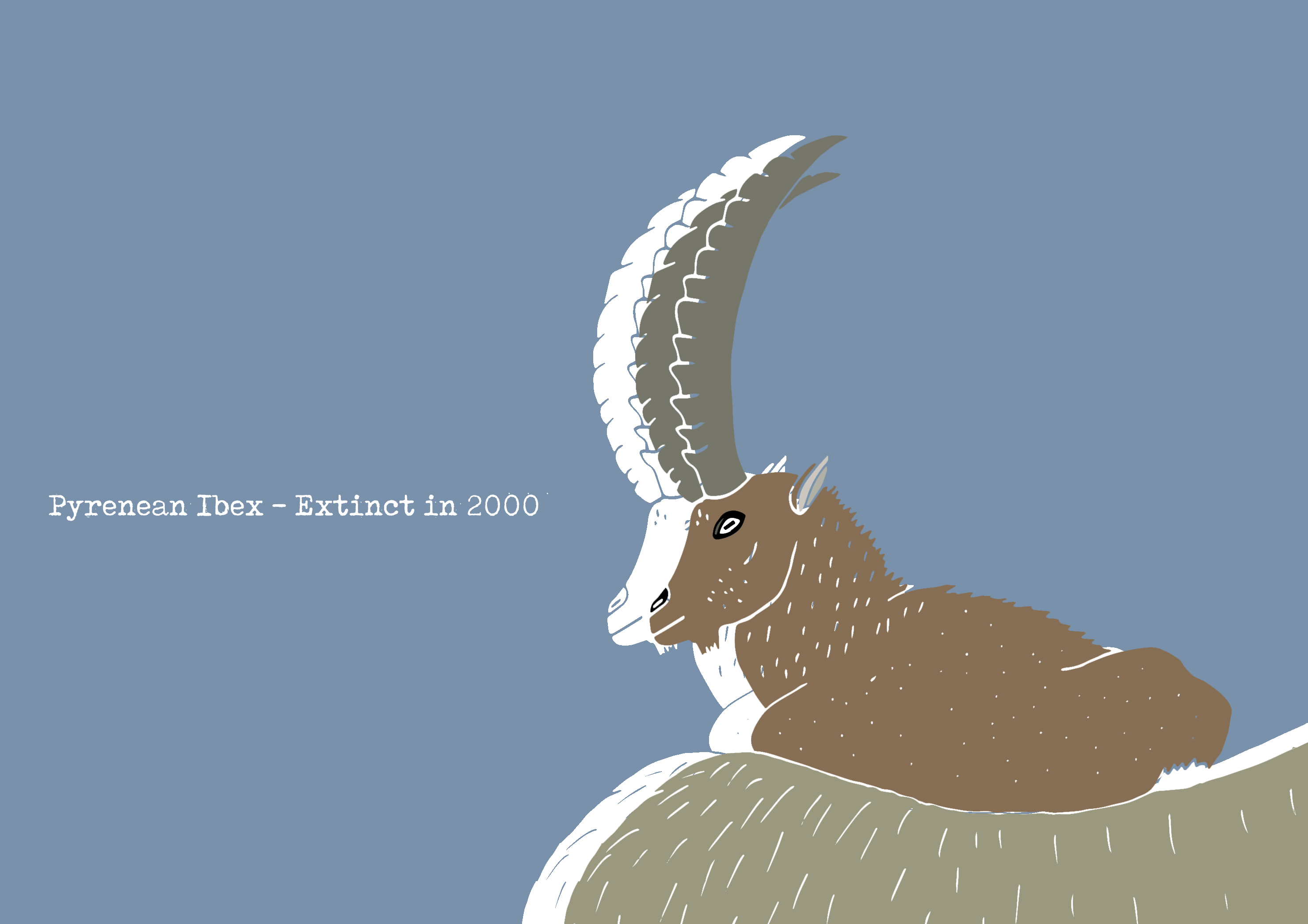 Ibex_Forever Extinct_by Virginia Elena Patrone