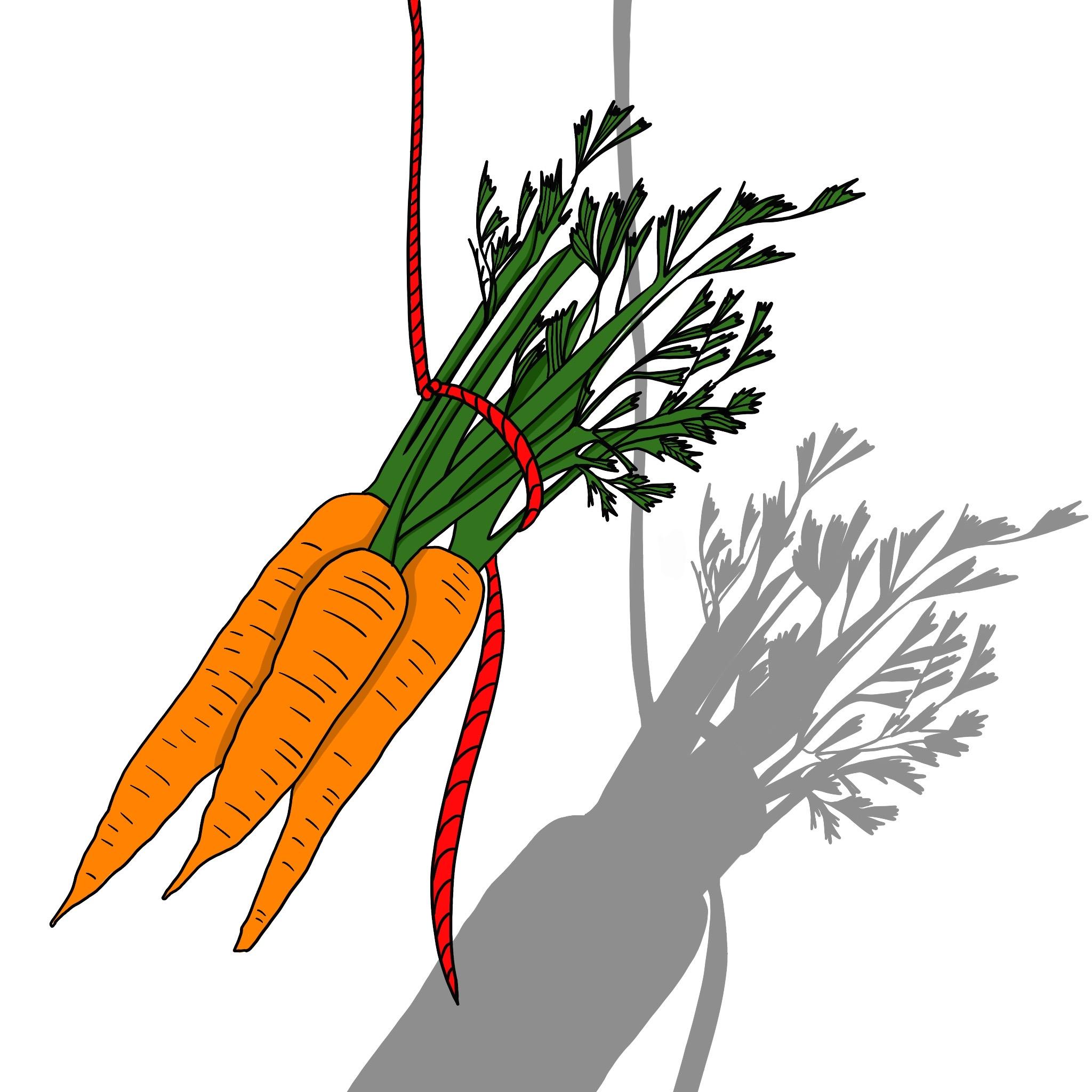 Carrots by Virginia Elena Patrone